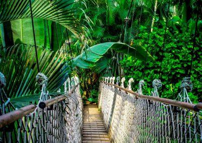 Junglefeest